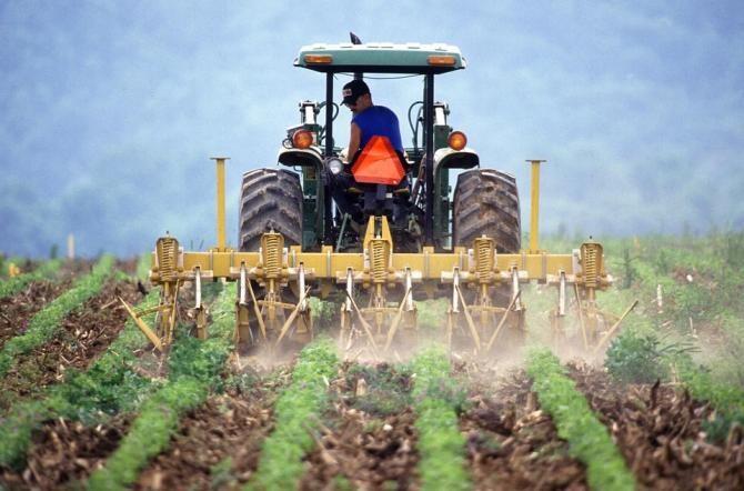 Reforma Politicii Agricole Comună, aprobată de statele membre UE / Foto: Pixabay