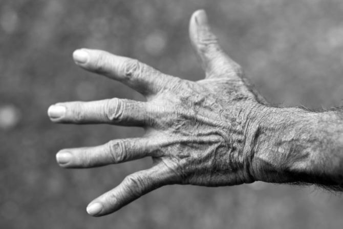 Bătrân de 87 de ani, găsit în zona unei mlaştini din Slatina / Foto: Pixabay