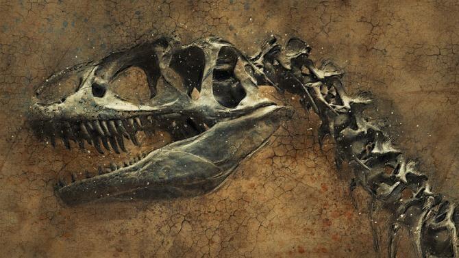Urmele ultimilor dinozauri, descoperite în zona Stâncilor Albe din Dover / Foto: Pixabay