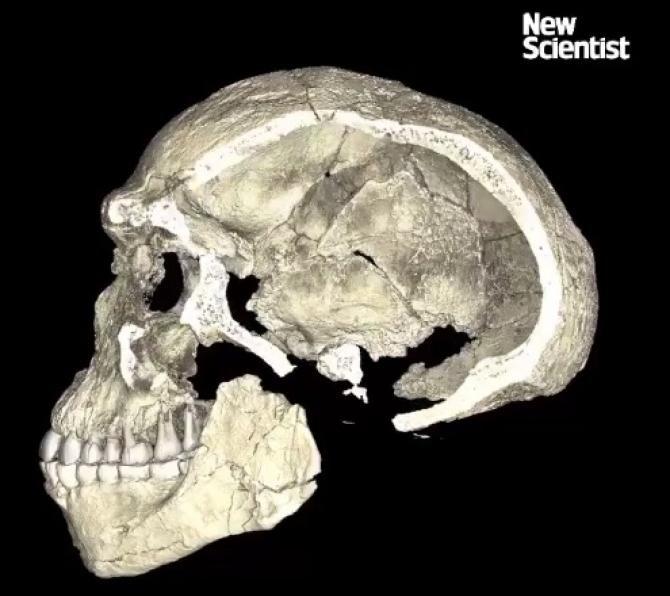 O nouă specie de om preistoric, descoperită în Israel / Foto: Pixabay
