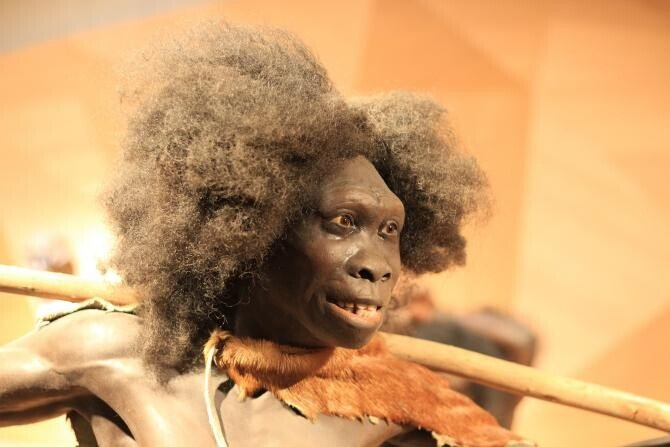 """""""Omul Dragonului"""", o nouă specie descoperită. Ar putea fi cel mai apropiat de Homo Sapiens  /  Foto cu caracter ilustrativ: Pixabay"""
