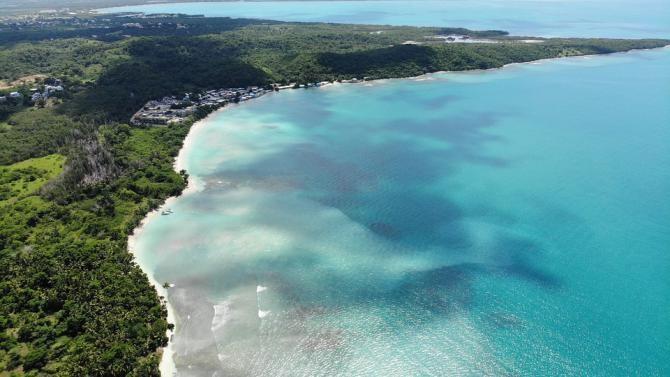Pixabay / Tone de alge au acoperit plajele Mării Caraibelor