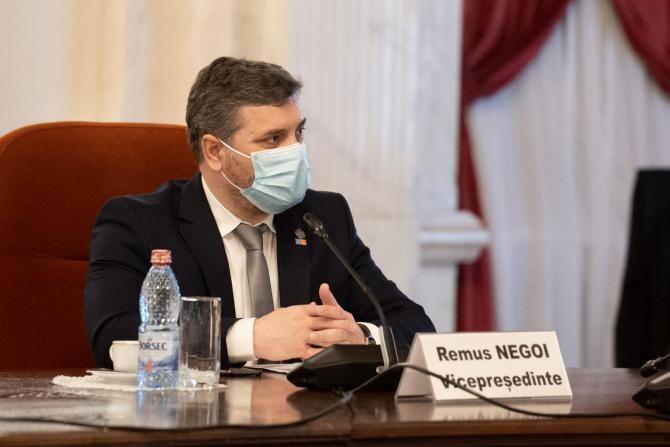 Facebook Remus Negoi