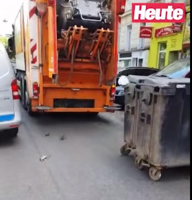VIDEO cu şobolani care sar din mașinile cu gunoi și fug pe străzile din Viena
