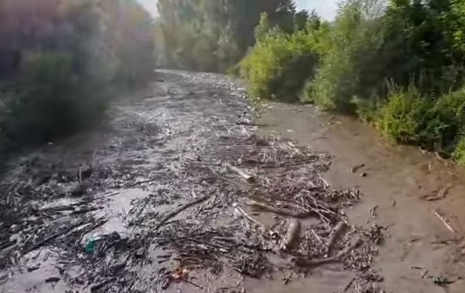 Captură video - Facebook Dorel Lazăr