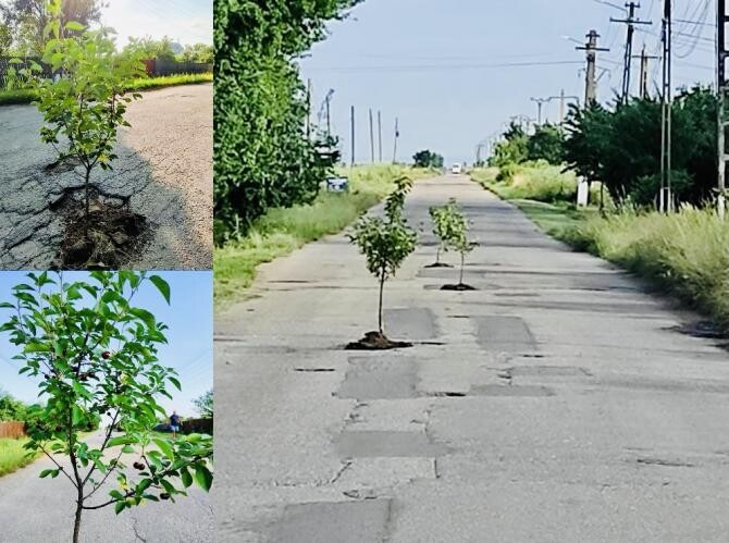 2. -imagine fara descriere- (visini_gropi_asfalt_rociu_46003200.jpg)