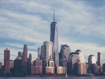 Imagini apocaliptice în New York. Sute de păsări moarte au căzut pe străzi / Foto: Pixabay