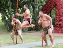 Noua Zeelandă și-ar putea schimba numele. Partidul maorilor cere revenirea la denumirea dinaintea venirii colonialiștilor   /   Foto cu caracter ilustrativ: Pixabay