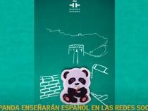 Un linx şi un panda, profesori de limbă spaniolă pe reţelele de socializare din China / Captură Video