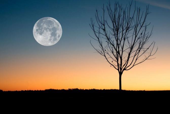 Horoscop, marți, 5 octombrie 2021. Foto Pexels