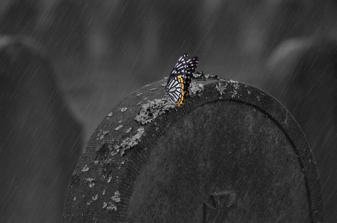 Foto ilustrativ. Imagine de Claudia Peters de la Pixabay
