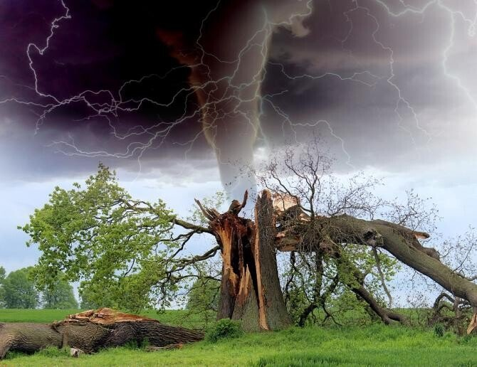 O TORNADĂ a făcut prăpăd în Italia. Șapte AVIOANE au fost distruse / Foto: Pixabay