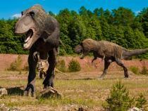 Pixabay / S-a aflat de ce unii dinozauri trăiau mai mult