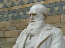 Microscop din vremea lui Charles Darwin, scos la licitație la 200 de ani de la fabricație  /  Sursă foto Pixaby