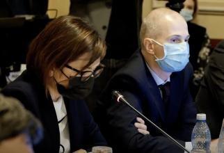 foto captură video/ Ioana Mihăilă audieri Parlament