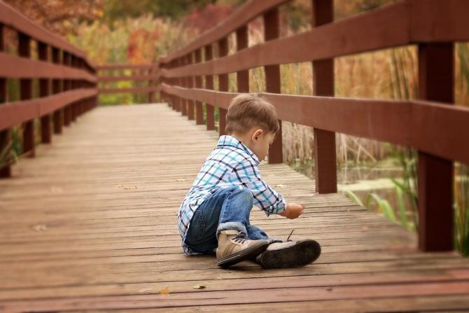 Un copil de trei ani a reușit să supraviețuiască singur într-o pădure timp de câteva zile, după ce s-a rătăcit  / Foto: Pixabay