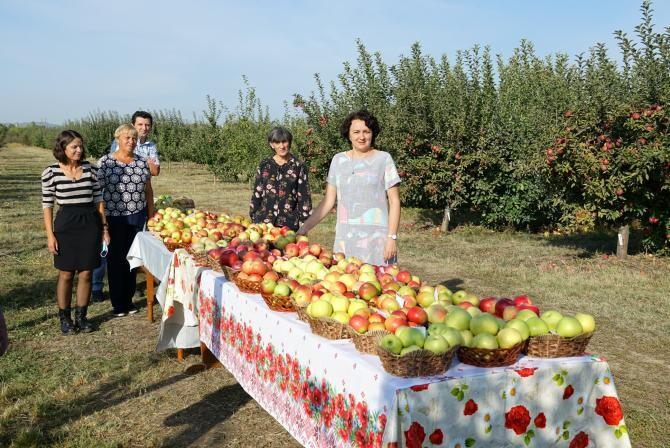 Foto: Facebook / Institutul de Cercetare - Dezvoltare pentru Pomicultura