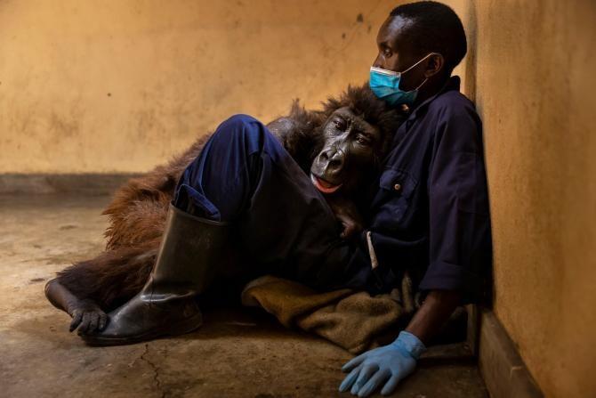 Facebook Virunga National Park